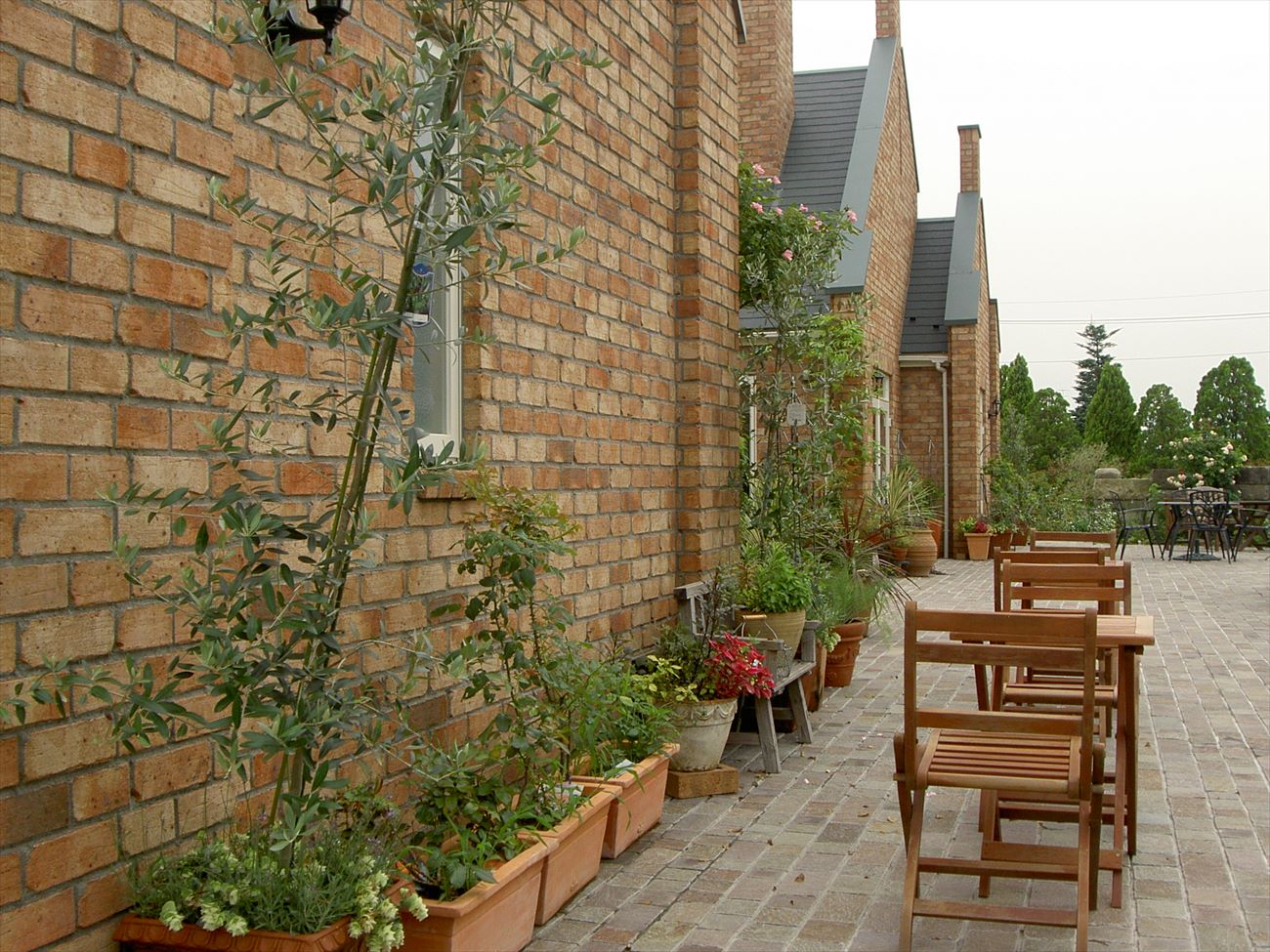 レンガの家が外観:自然素材のため植栽とも馴染みやすい